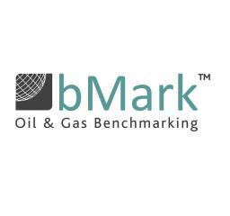 Oil_Gas_Benchmarking_software_bMark_Belltree_limited_subsuface_wells_logo