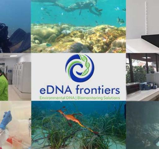 eDNA_frontiers_thumbnail