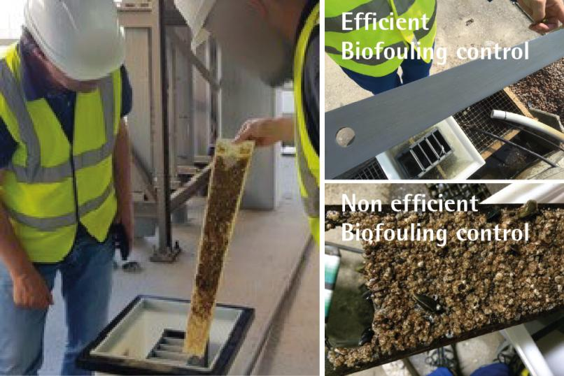 Efficient biofouling control biofouling control monitor